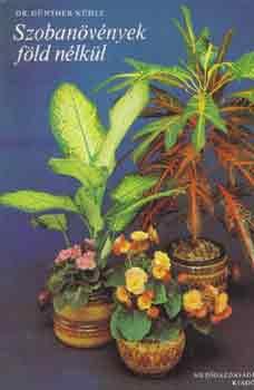 Szobanövények föld nélkül